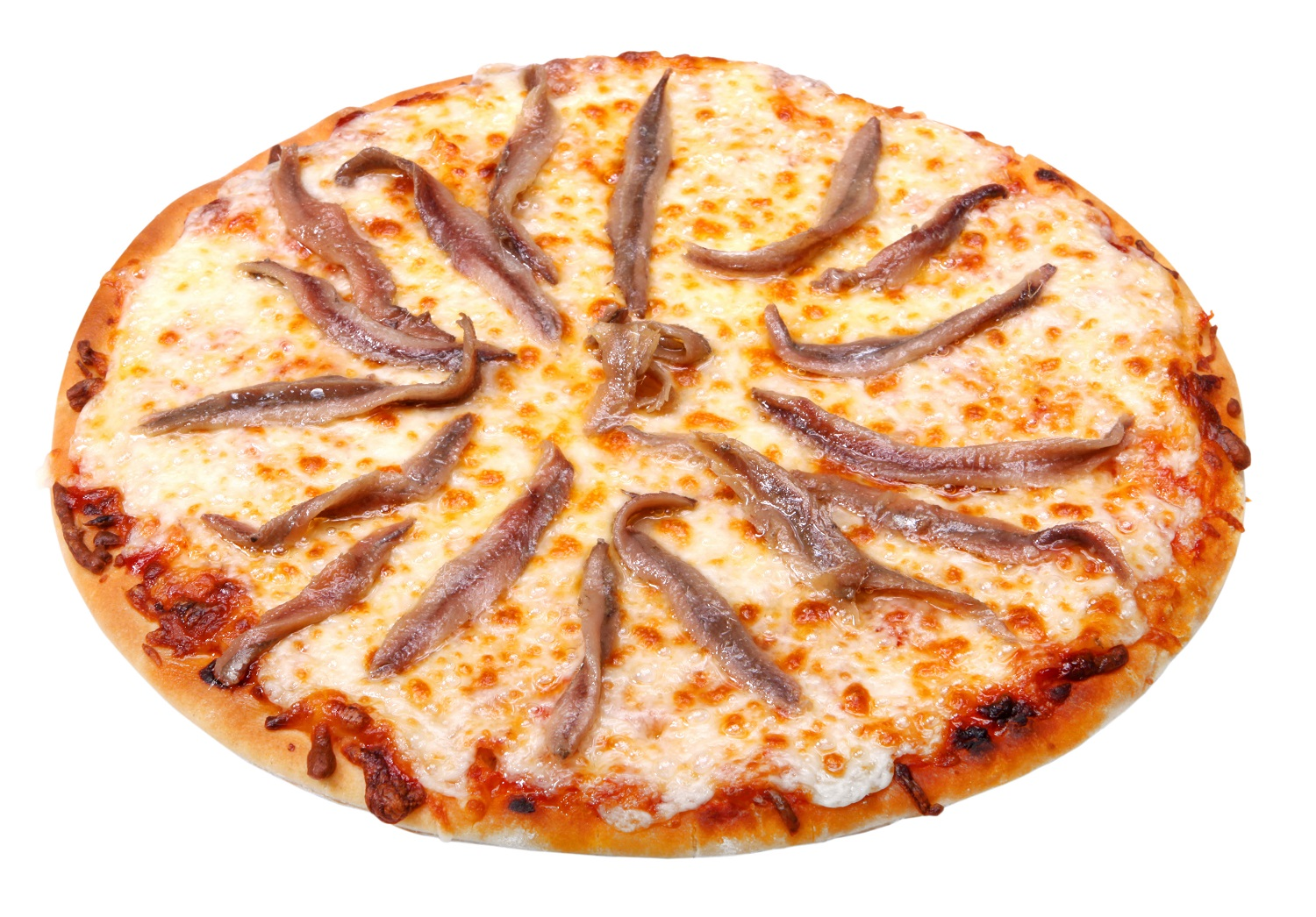 anchovies-pizza