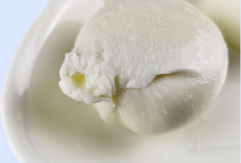 burrata-cheese