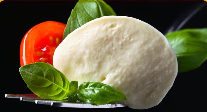 mozzarella-cheese2